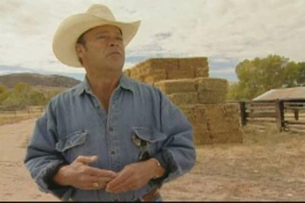 Rancher Reid Rosenthal Makes Hay