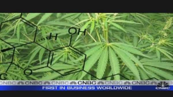 Industrial Hemp: Growing Your Profits?