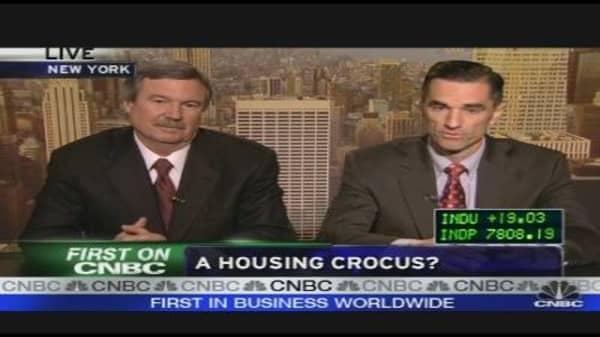 A Housing Crocus?