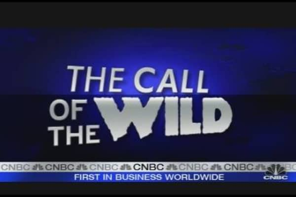 Call of the Wild: Cap & Tax Policy