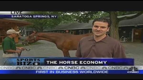 The Horse Economy