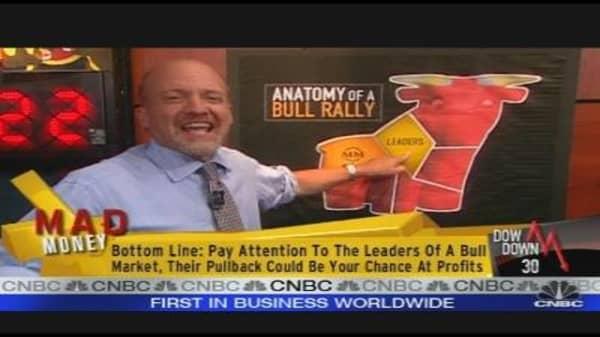 Anatomy of a Bull Market