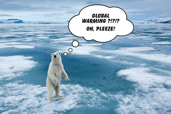 """When I heard about this my """"Oh, please!"""" The fund is supposed to invest in companies that have an increased focus on products or services tied to combat global warming. Never mind that the fund has turned in a cold performance. According to Index Universe, which helped on this project: """"Technically, Credit Suisse is on the hook for the returns here, which are tied to the Credit Suisse Global Warming index. Good luck figuring out what that means though, the Elements website hasn't had holdings in"""