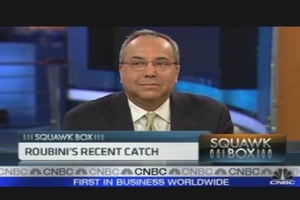 Roubini's Recent Catch
