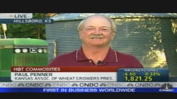Wheat Prices Continue to Climb