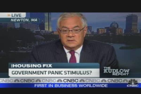 Government Panic Stimulus