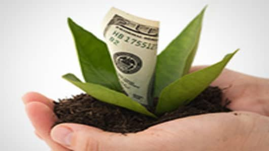money-plant-in-hands-200.jpg
