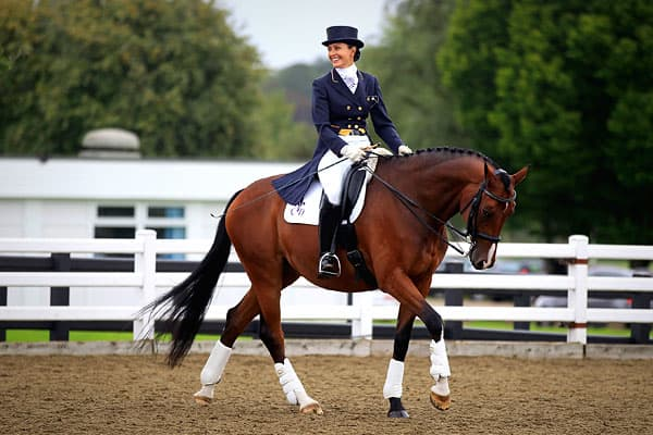 Any sport that requires the purchase and stabling of a horse isn't going to be cheap from the start. Dressage entails a horse and rider performing a series of highly choreographed movements.While it is possible to get a first level horse on the U.S. market for as little as $5,000, a world-class beast with international potential is in the $125,000 to $250,000 price range, according to  which helps Dressage riders find the right horse, and offers helpful guides to the expenses involved.