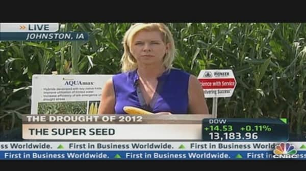 Dupont Marketing Drought Resistant Seeds