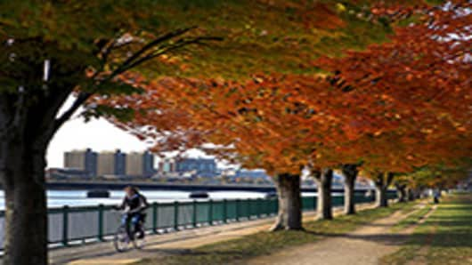 Fall foliage along the banks of the Charles River.