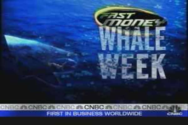 Whale Week: Warren Buffett