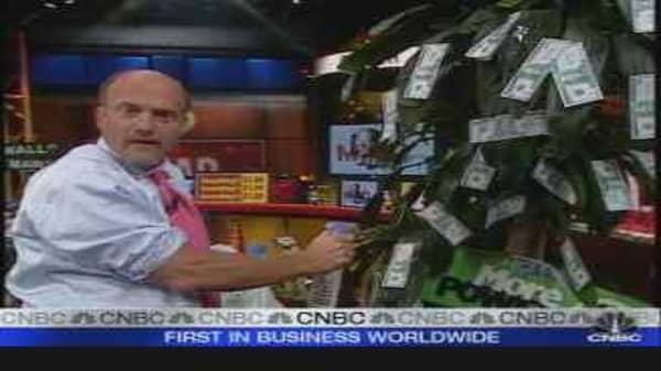 Dollar Tree: A Good Bargain