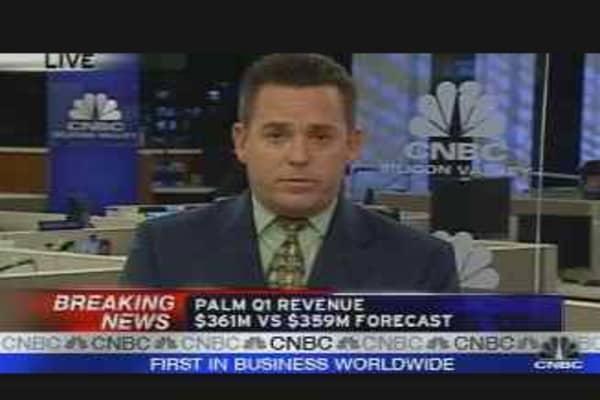Palm Earnings