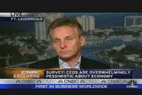 CEO Survey