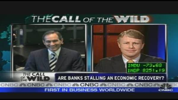 Call of the Wild: Banks Stalling Econ Recovery?