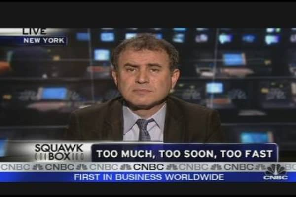 Roubini's Outlook