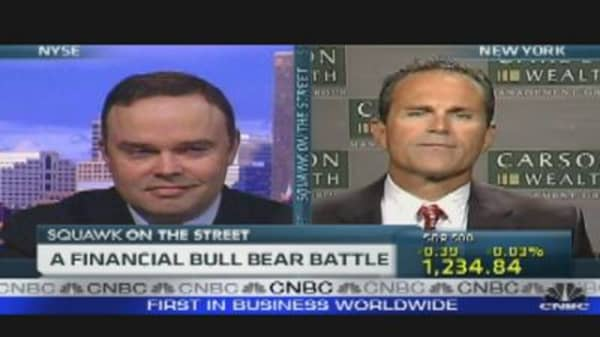 A Financial Bull Bear Battle