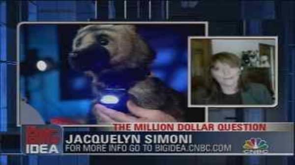 Million Dollar Question: Puplight
