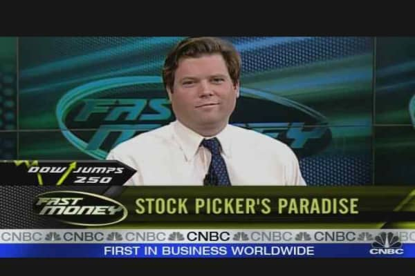 Stock Picker's Paradise