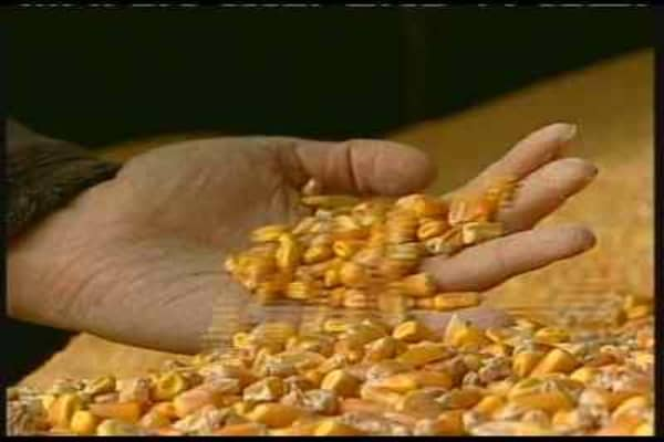 Ethanol: What Went Wrong