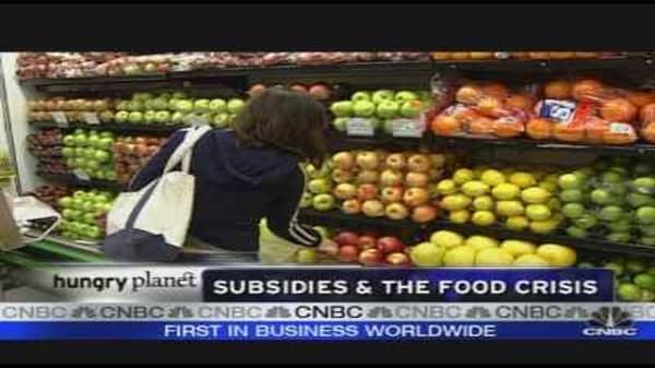 Subsidies & the Food Crisis