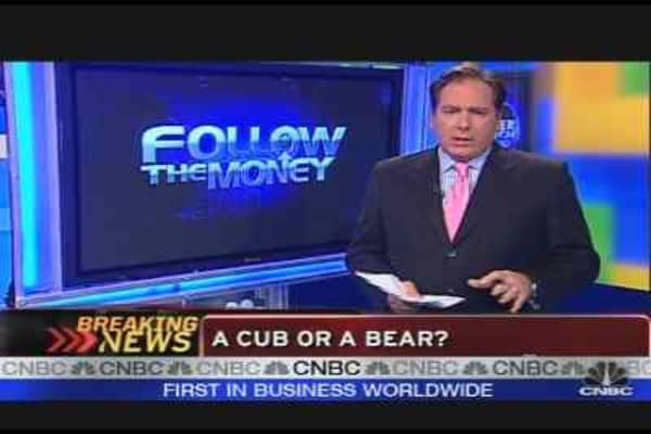 A Cub or a Bear
