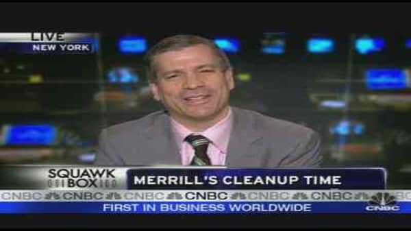 Merrill's Cleanup