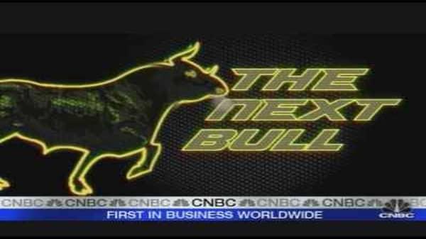 The Next Bull