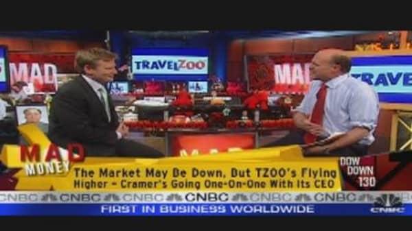 TZOO: A Big Deal?