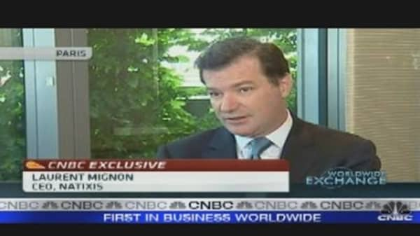 Natixis CEO Sees More Volatility in 2011