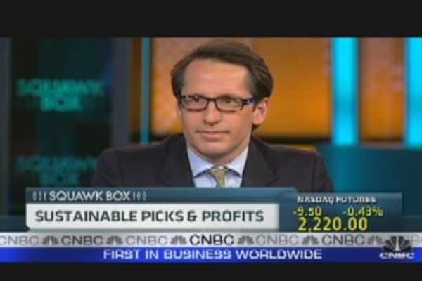 Sustainable Picks & Profits