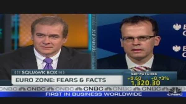 Euro Zone: Fears & Facts