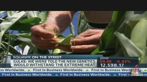 Corn Prices Surge on USDA Forecast