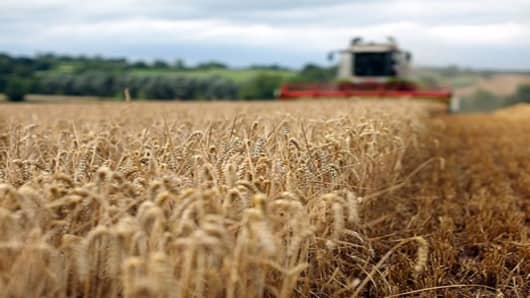 Pro: Watch Wheat Heading Into Crop Report