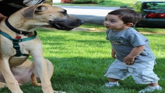 """""""Kids & Pets"""""""