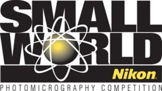 Nikon Small World Logo