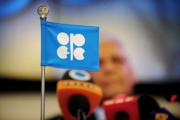 The logo of the of the Organization of the Petroleum Exporting Countries (OPEC) is displayed.