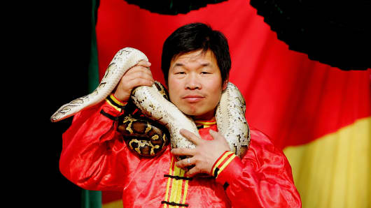 China Year of the Snake Chinese New Year