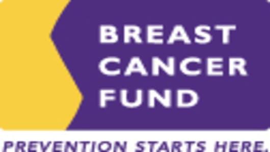 Breast Cancer Fund Logo