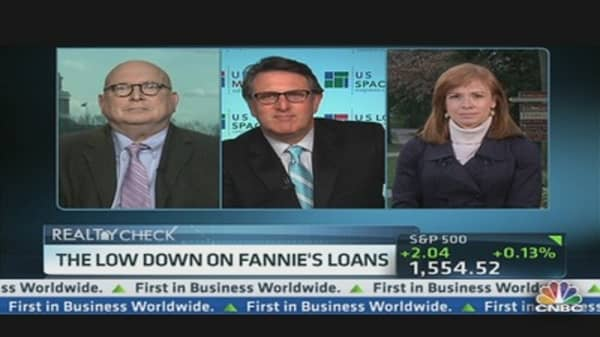 The Low Down on Fannie's Loans