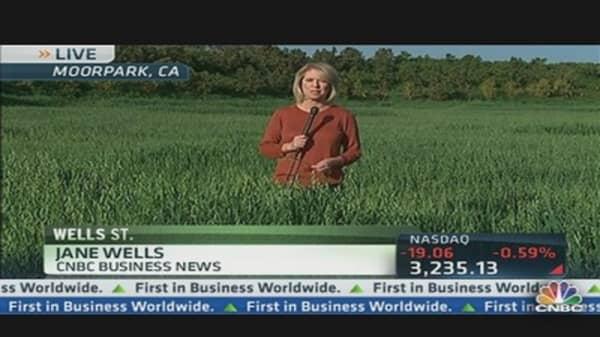 Grain Prices, Ronald Reagan & FDR