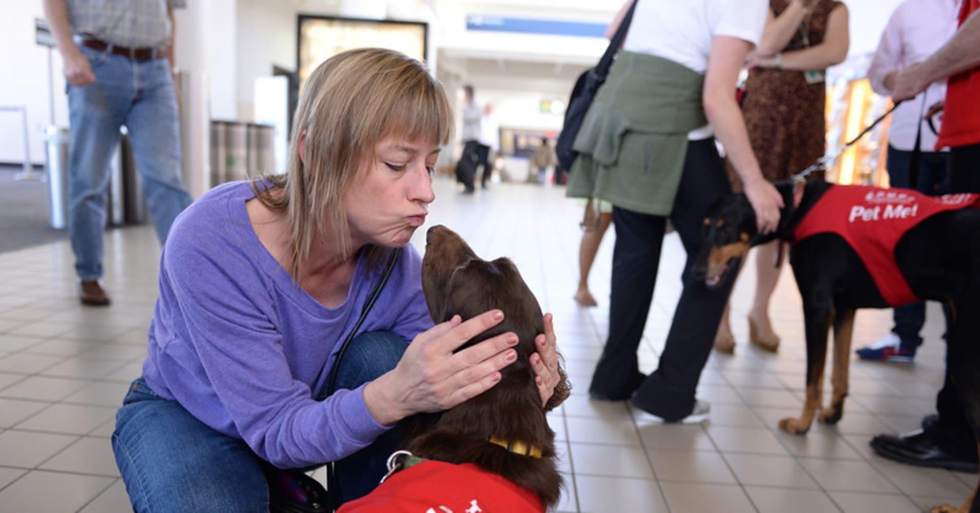 Now Arriving: Cuddly Volunteers to Help De-Stress LAX Fliers