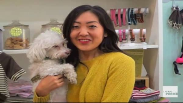 Get to Know New York Dog Nanny