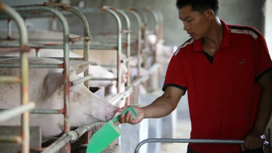 "A hired hand feeds sows who recently gave birth to a new litter at the Grand Canal Pig Farm in Jiaxing, in China's Zhejiang province. The importance of pork in the Chinese diet and the role of prices in affecting social stability are demonstrated by the establishment by the central government of a ""strategic pork reserve,"" the only one of its kind in the world."
