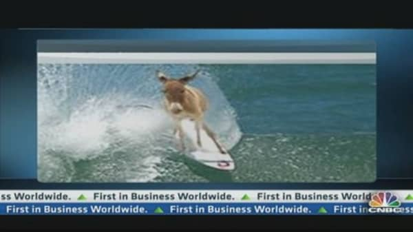 'Even a Donkey on a Surfboard Was Making Money'