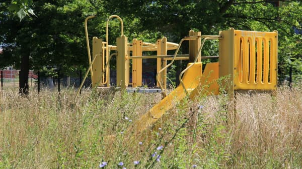 A Detroit city park falls into disrepair as a result to city services cutbacks.
