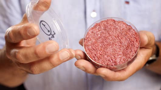 A lab-grown meat burger made from Cultured Beef, which has been developed by Professor Mark Post of Maastricht University in the Netherlands.