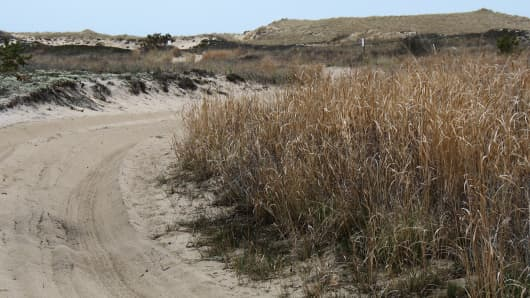 Dunes at Napeague, New York