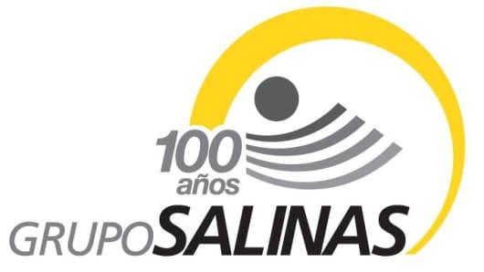 Grupo Salinas logo