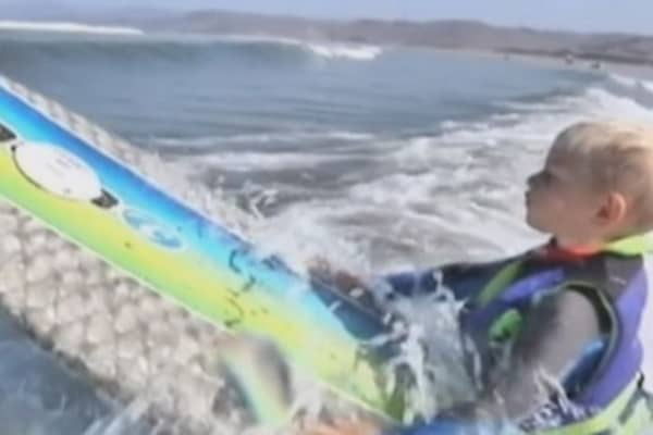 Cowabunga little dude: 3-year-old surfing sensation